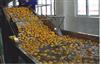 橙汁加工生产线价格果汁加工生产线价格