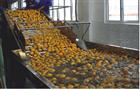果汁加工生产线价格
