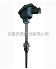 WZP-2303F2防腐热电阻