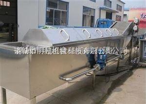 不锈钢辣椒清洗机