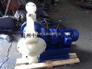 DBY工程塑料电动隔膜泵