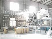 水分散粒剂工艺说明-常州永昌制粒