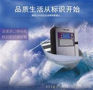 依玛士9020微字符喷码机
