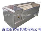 HM-180型-全自动胡萝卜毛滚清洗机,土豆高效清洗机