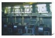 AFS全流態化速凍機菜丁速凍機