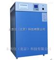电热恒温培养箱 wi105849