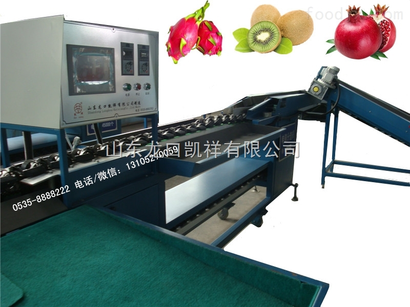 红阳猕猴桃电脑选果机,水果分选神器