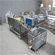 供应蔬菜清洗设备 高压气泡双效清洗机 蔬菜加工生产线