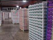 食品保鲜冷库的作用是什么,大型冷库建造冷库出租多少钱一平米