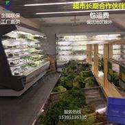超市便利店冷柜风幕柜展示柜