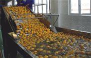 小型果汁饮料生产线厂家