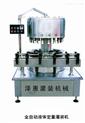 全自动高精度电子定量灌装机