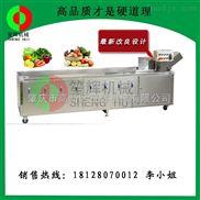 豪华型臭氧消毒洗菜机