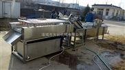 新疆干枣清洗机