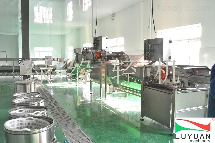 自动蔬菜加工机械