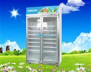 双门展示冷柜 雅淇便利店单门饮料冷藏柜 两门冰柜