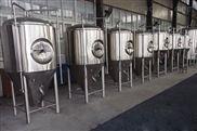 啤酒发酵罐不锈钢发酵罐啤酒发酵设备