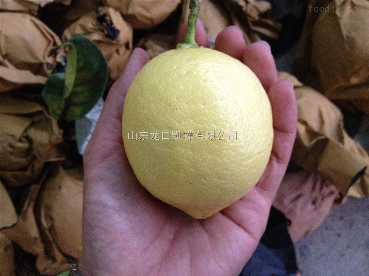 四川全自动柠檬,柠檬果袋机全自动柠檬生产厂家,四川柠檬套袋机