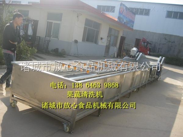 供应食用菌香菇清洗机流水线