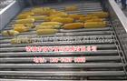fx-1000供应玉米滚杠清洗机 玉米去须机 玉米专用清洗设备