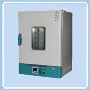 自控立式鼓风干燥箱DHG-9065Y