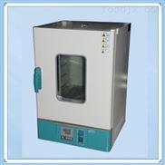 立式干燥箱DHG-9065