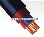 YJV0.6/1kV-2*95电力电缆