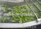 菠菜清洗机|蔬菜气泡清洗机放心机械