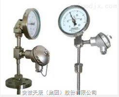 WSSE-401热电阻双金属温度计