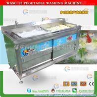 WAHZ-10-2可调超声波 叶菜清洗设备 果蔬清洗设备 超声波清洗机