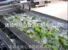 白菜清洗机|蔬菜气泡清洗机诸城放心机械
