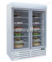 玻璃门冷冻展示柜-立式风冷冷冻展示柜-18~-24℃