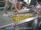 小型土豆清洗机