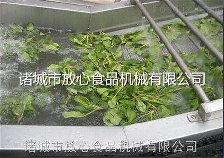 诸城放心机械蔬菜清洗机