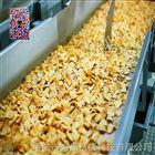 长沙薯片油炸机厂家