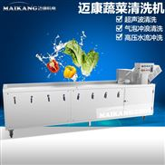 蒲公英气泡清洗机 全自动蔬菜清洗设备