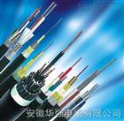 阻燃计算机屏蔽电缆 ZRC-DJYVP2-1*2*1.5