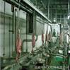 供应 屠宰设备  盘式白内脏检疫输送机