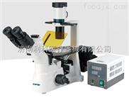 XD倒置荧光显微镜技术参数|价格