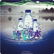 瓶装纯净水灌装机全自动灌装设备