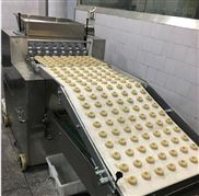 不锈钢自动苏打饼干生产线