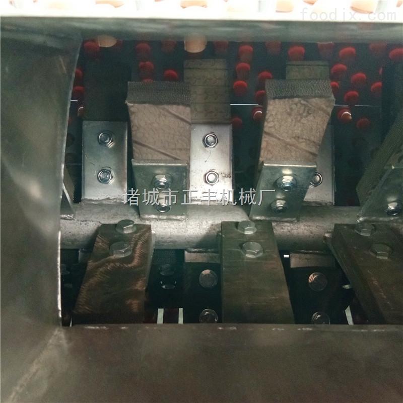 微型猪蹄打毛机生产厂家
