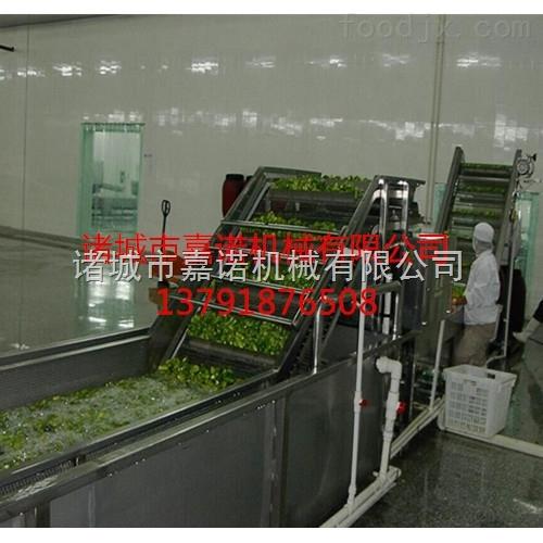 蔬菜气泡清洗机