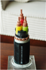 ZR-BPVVP-0.6/1KV-3*6变频电缆