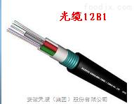 GYXTY-24B1光纤电缆