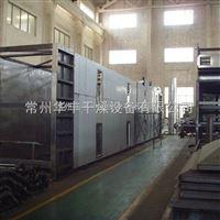 虾米脱水干燥机厂家