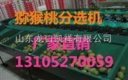 2017年不伤果面便宜的猕猴桃分选机器哪里有卖的