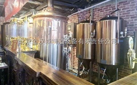 500升小型啤酒生产设备