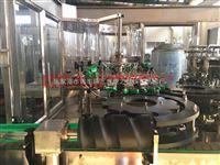 厂家直销玻璃瓶果汁饮料生产线