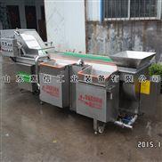 山東嘉信小型渦流蔬菜清洗機